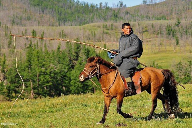 Peaceful Mongolia tour