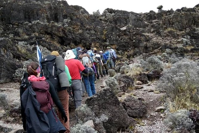 Machame 7 Days Kilimanjaro For Charity photo 6