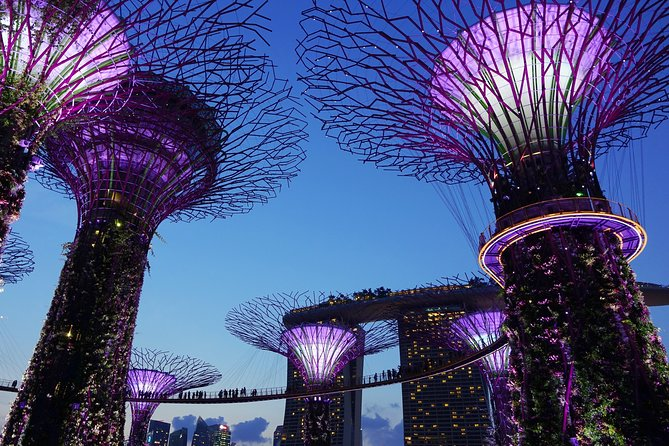 Marina Bay Sands Sky Park & Gardens By The Bay Combo Ticket With 2 Way Transfer photo 2