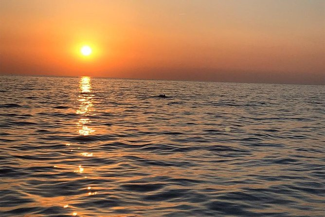 Sunset and dolphin excursion Pula - Ulika photo 14