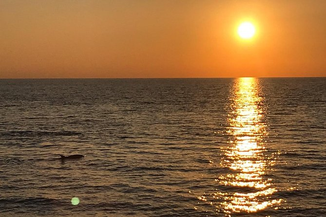 Sunset and dolphin excursion Pula - Ulika photo 4