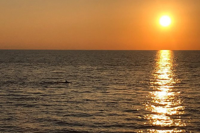 Sunset and dolphin excursion Pula - Ulika photo 10