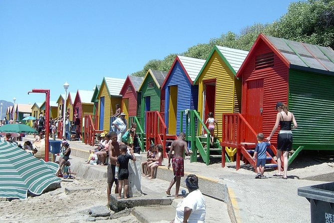 Cape of Good Hope Sightseeing and Penguins Full Day Tour From Cape Town photo 7