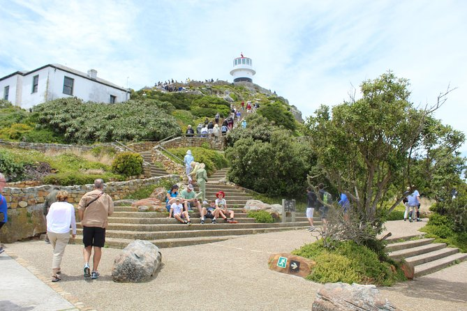 Cape Of Good Hope, Penguins Private Tour from Cape Town full day plus entry fees