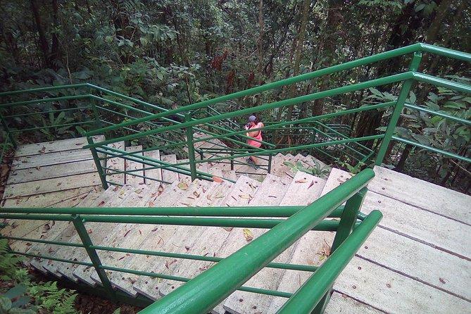 Cerro Tortuguero Tour (Aaron Tour's)