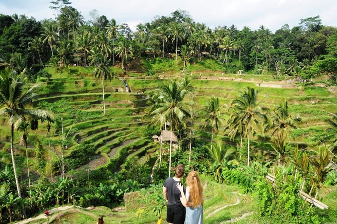 Popular Ubud The Most Visited Spot