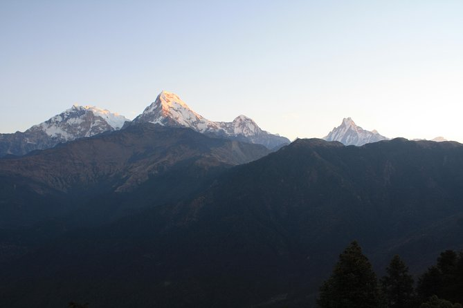 Ghorepani Poon hill trek in Nepal photo 10