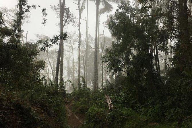 Trekking Finca La Argentina 2 days (3450 masl)