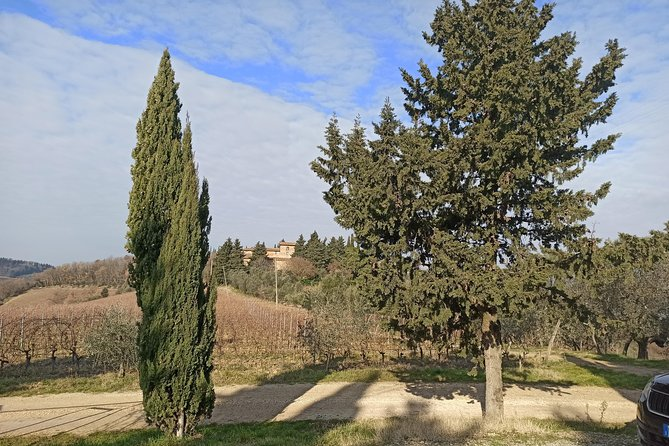 Regular Wine Tour in Chianti and visit of Lucca - small group sharing photo 9