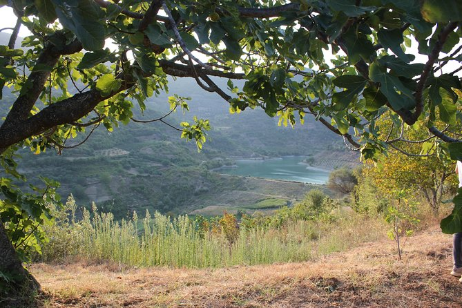 Bogove Waterfall tour and wine tasting In Roshnik Village/ by Berat City Tours