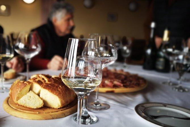 Private Wine Tasting Tour from Zagreb