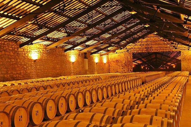 Navarra Wineries Tour