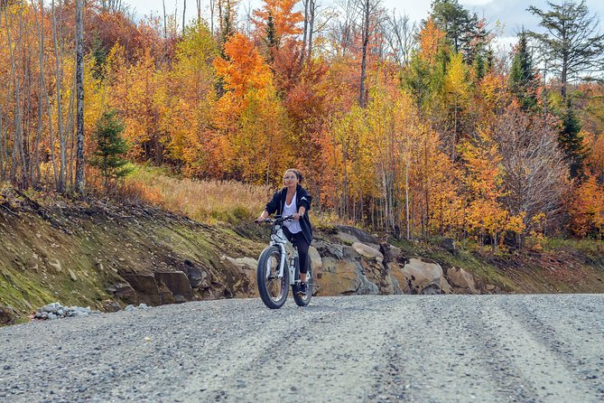 Guided electric fat bike tours photo 7