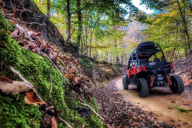 Middle TN Back Country Tour on a SXS! photo 1