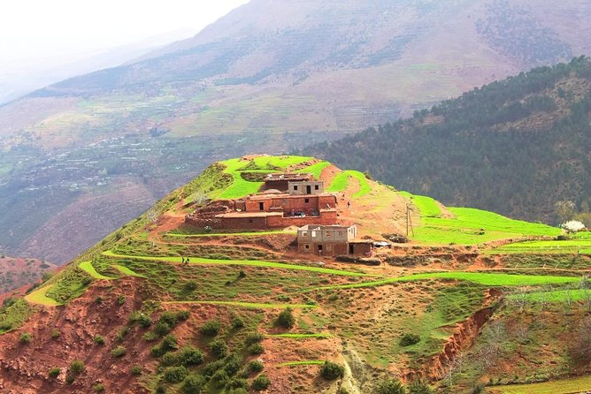 Atlas Mountains Day Trip From Marrakech 3 Valleys & Berber Villages & Camel Ride photo 16