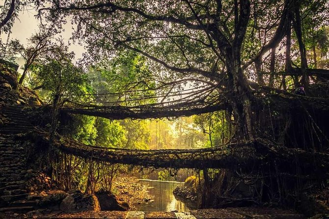 6-Days Mesmerizing Meghalaya tour photo 9
