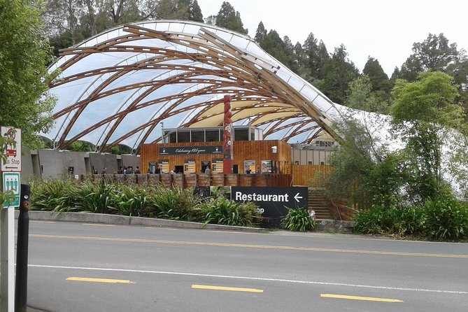 Tauranga Shore Excursion: Waitomo Caves and The Kiwi House