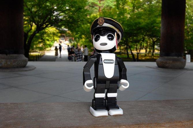 MK Kyoto Robot Tour! See Kyoto w/ Robohon ( Private 6 hour luxury taxi tour)
