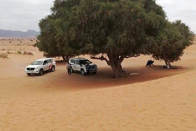 Agadir Day tours to Mini Sahara
