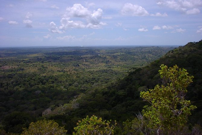Shimba Hills National Reserve Day Tour from Mombasa/Diani Beach & surroundings photo 3
