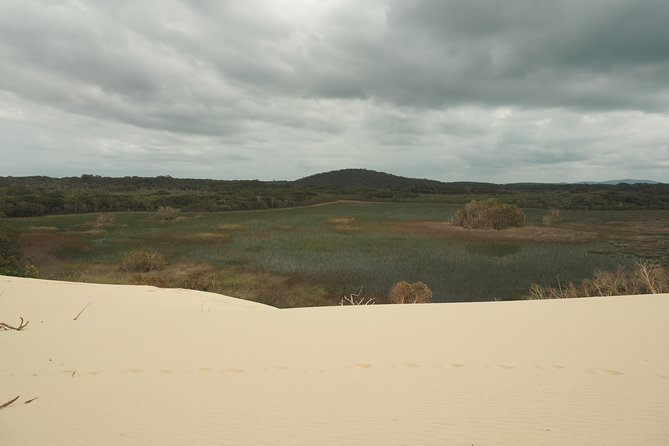 Wetlands & Sand Dunes Guided Walk