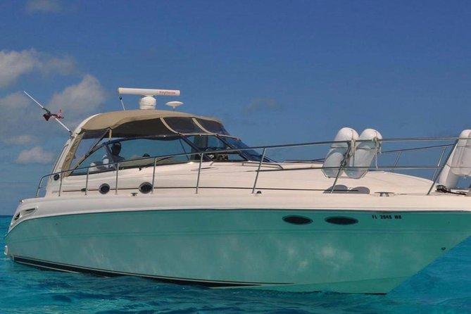 Yacht 41.6
