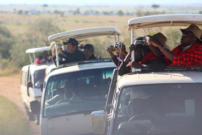 7 Days Maasai Mara/L.Nakuru/Amboseli