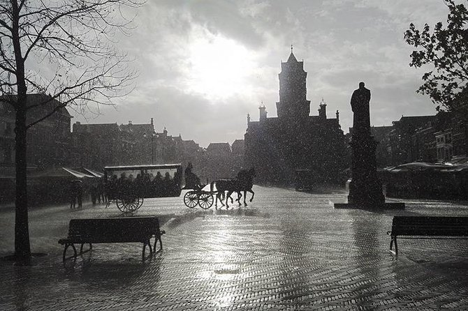 Horse drawn carriage tours Delft photo 1