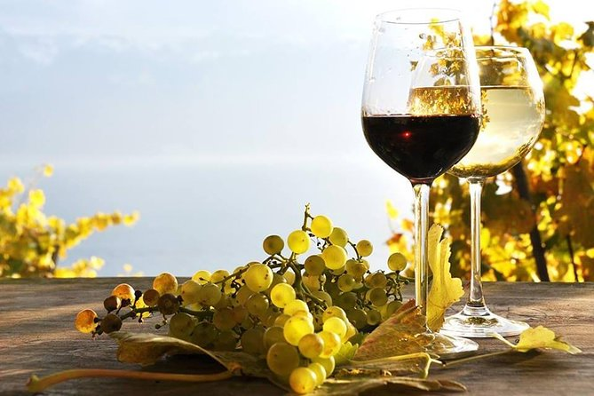 Private Wine Tour in Baku