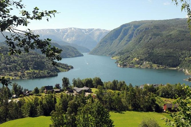 Private day tour to Hardanger - incl Hardanger Fjord Cruise and Vøringsfoss