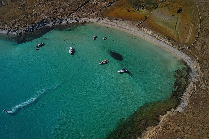 Private Speedboat Cruise from Delos to Rhenia and Mykonos
