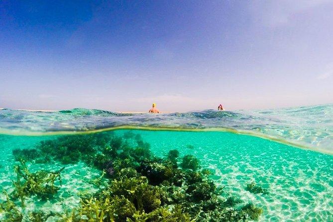 Boat tour to Giftun Island - Hurghada
