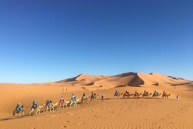 Fes to Marrakech 4 Days Private Desert Tours including night in Luxury Camp