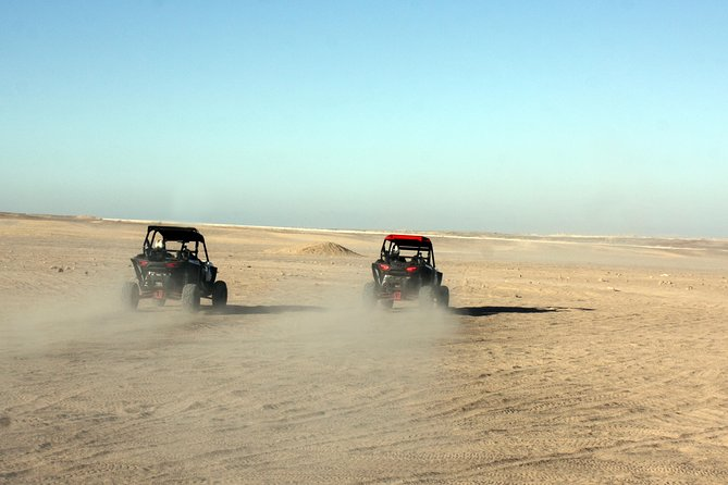 Polaris Desert Buggy with Camel Ride (3 Hours) - Hurghada photo 6