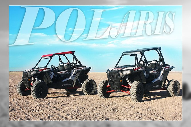 Polaris Desert Buggy with Camel Ride (3 Hours) - Hurghada photo 19