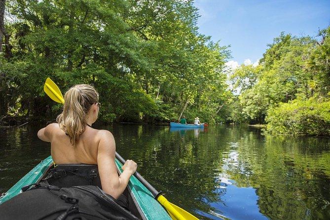 Paddling the Amazing Turkey Creek Sanctuary