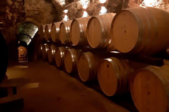 Regular Wine Tour in Chianti and visit of Lucca - small group sharing photo 18