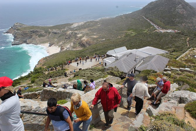 Private Cape Point Tour - A full day of exploring the Cape Peninsula