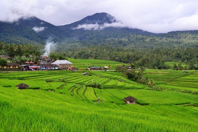 Private Full-Day Bedugul Village and Jatiluwih Rice Fields Tour from Bali