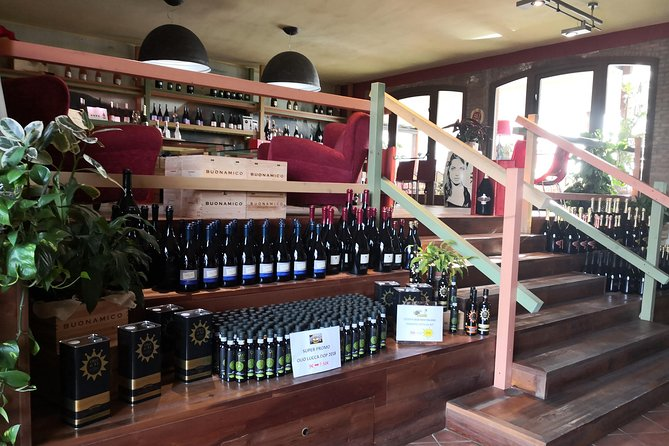 Pisa Lucca city of Pinocchio and tasting local wines from Port of Livorno