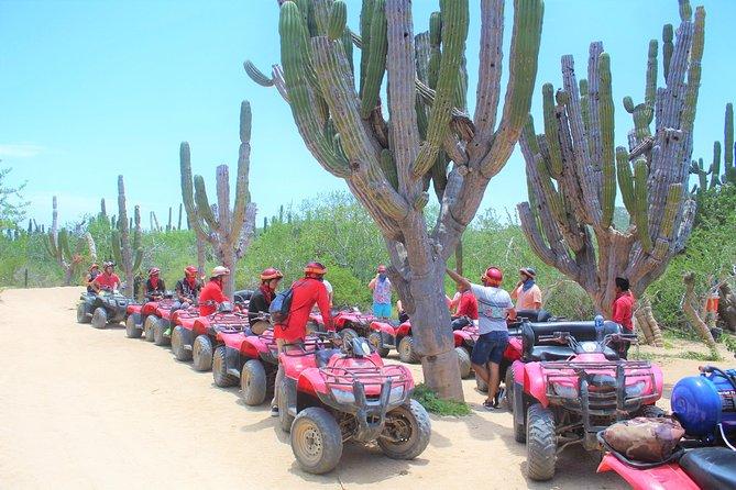 ATV Desert & Beach ride over the mountains and through Migrino beach!