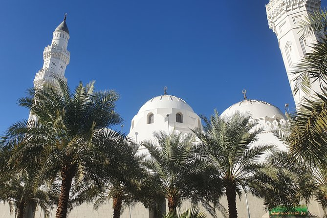 Visit the most famous sights in madina