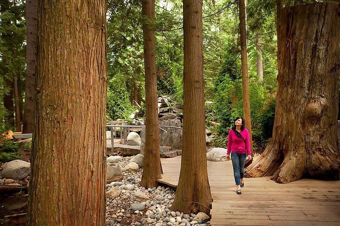 Small Group Tour: Vancouver Sightseeing and Capilano Suspension Bridge