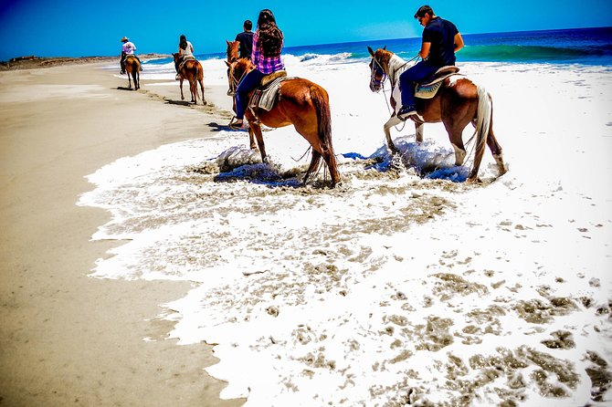 Horseback Riding Migrino Beautiful Beaches! photo 7