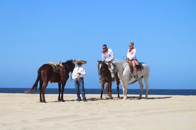 Horseback Riding Migrino Beautiful Beaches! photo 13