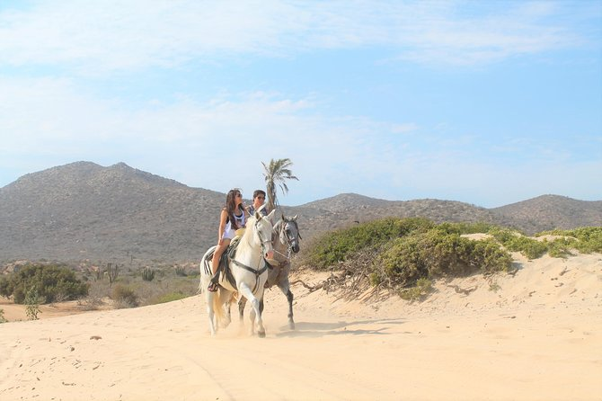 Horseback Riding Migrino Beautiful Beaches! photo 4