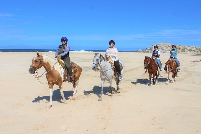 Horseback Riding Migrino Beautiful Beaches! photo 11