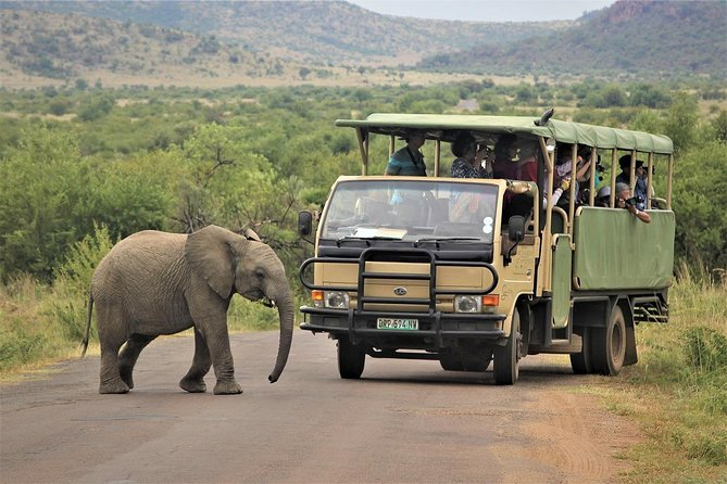 5-Day Garden Route Shared Tour from Cape Town including Addo National Park