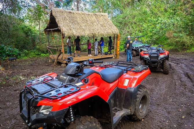 Polynesian ATV Tour photo 23