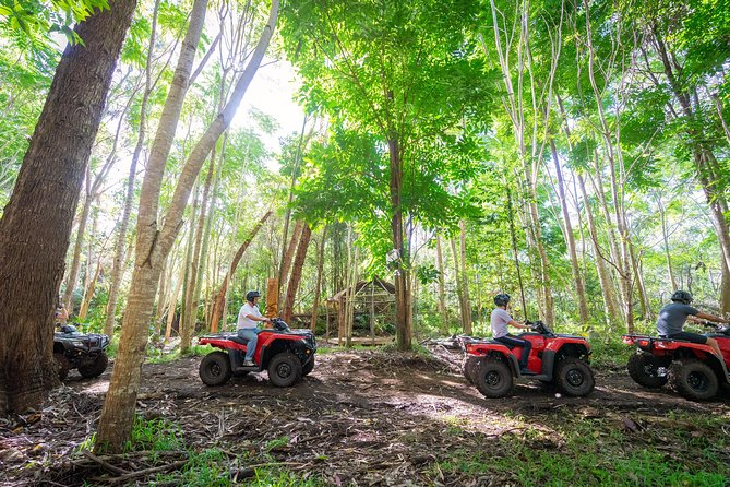 Polynesian ATV Tour photo 25